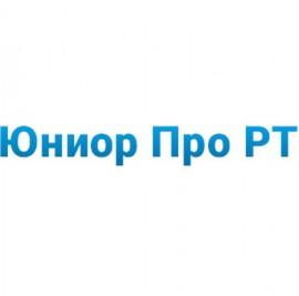 ИБП Импульс Юниор Про РТ